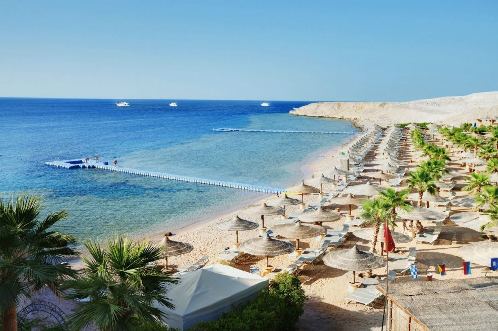 start-selling-tours-to-egypt-do-not-miss-the-best-deals