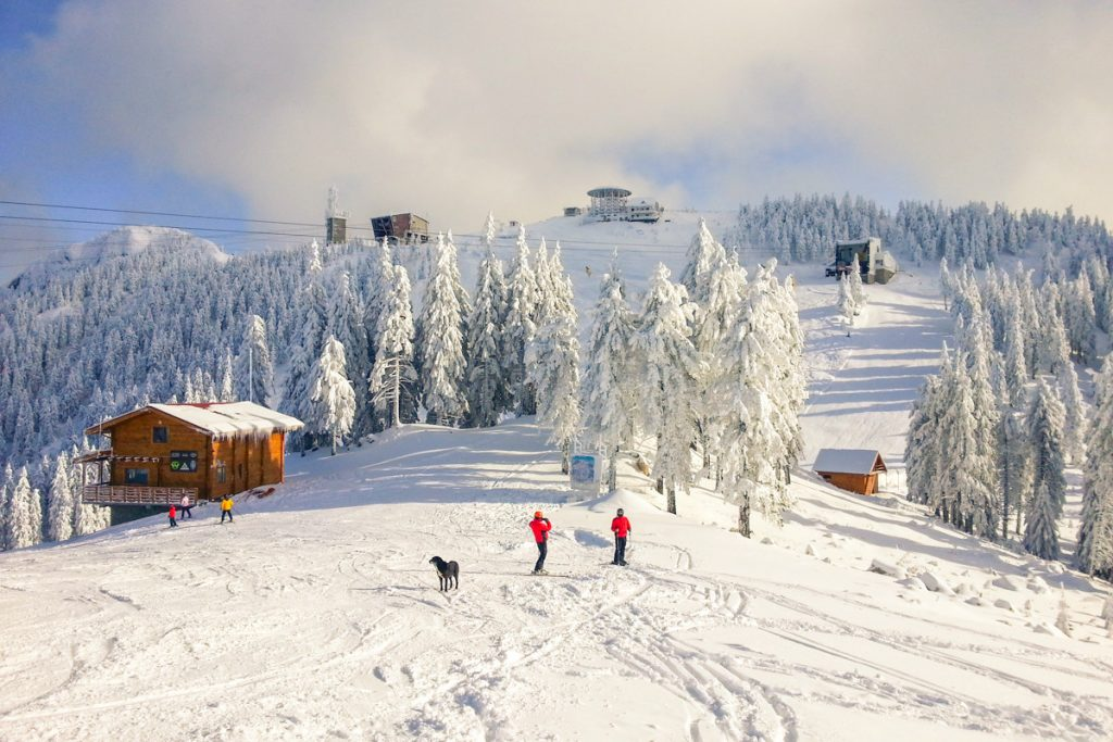 winter-holidays-in-the-mountains-of-romania2